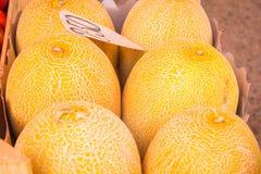 Melones en el mercado Foto de archivo libre de regalías