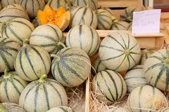 Melones en una parada del mercado Imagen de archivo libre de regalías
