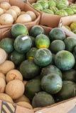 Melones escogidos frescos imagen de archivo