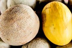 melones frescos y orgánicos imagenes de archivo