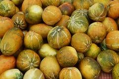 Melones tailandeses del cantalupo Fotografía de archivo