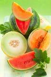 Melones y sandía Imágenes de archivo libres de regalías