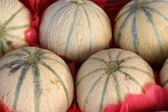 Meloni Fotografie Stock Libere da Diritti