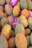 Meloni Fotografia Stock
