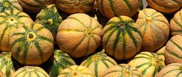 Meloni 7795 Immagini Stock