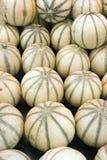 Meloni al servizio del coltivatore Fotografia Stock
