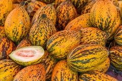 Meloni freschi Immagine Stock Libera da Diritti