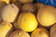 Meloni freschi dal venditore della frutta Fotografia Stock Libera da Diritti