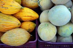 Meloni freschi della roccia Fotografia Stock Libera da Diritti
