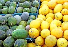 Meloni gialli e verdi Fotografia Stock Libera da Diritti