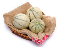 Meloni in un canestro immagine stock libera da diritti