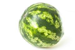 Melonowa owoc w białym pracownianym tle Zielony cały melon Obrazy Stock