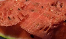Melonowi plasterki Fotografia Royalty Free