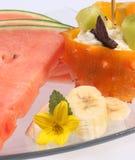 Melonowi plasterki Zdjęcie Royalty Free