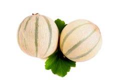 Melonowy kantalup zdjęcie royalty free