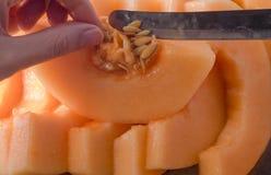 Melonowy plasterek Owocowy plasterek przygotowywający jeść fotografia royalty free
