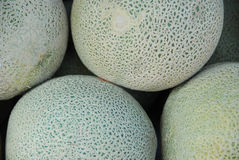 Melons Stock Image