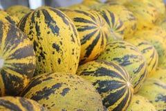 Melons Stock Photos