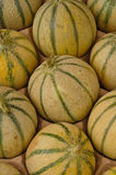 Melons Photos stock