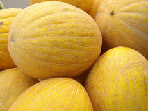 Melons Stock Images
