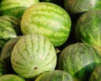 melons Imagem de Stock