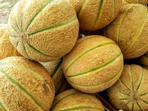 melons Image libre de droits