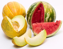 Melons Stock Photography