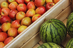 melons and apples Royalty Free Stock Photo