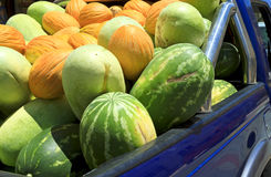 Melons on the back of blue pick-up truck Stock Photos