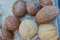 Melons and coconuts Stock Photography