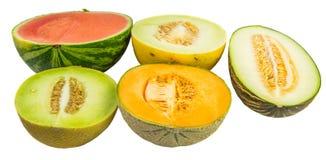 Melons coupés en tranches par moitié Vii Photographie stock
