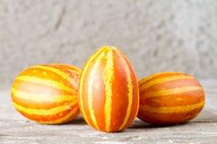 Melons d'ananas Image libre de droits