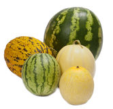 Melons d'isolement Images stock