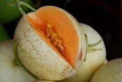 Melons de cantaloup Photographie stock libre de droits