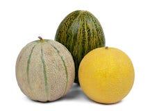 Melons de cantaloup photos stock