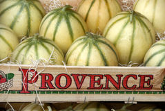 Melons de France Photographie stock libre de droits