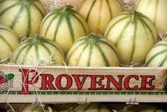 Melons de France photographie stock libre de droits