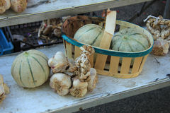 Melons and garlic Stock Images