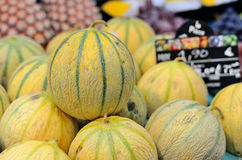 Melons on the market. Stock Photos