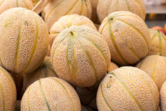 Melons on market Royalty Free Stock Photography