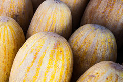Melons for sale Royalty Free Stock Photos