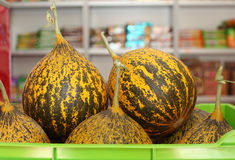 Melons in a shop Stock Images