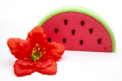 Melons sponge with hibiscus blossom. On white background Royalty Free Stock Image