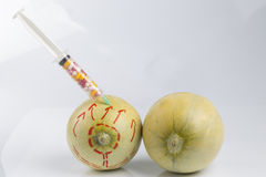 Melons and syringe with pills Stock Images
