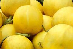 melonu kolor żółty zdjęcie royalty free