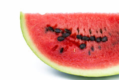 Melonu segmentu zakończenie up Zdjęcie Stock