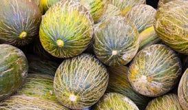 melonu stosu woda obraz royalty free