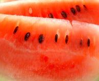 melonvatten Fotografering för Bildbyråer