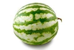 melonvatten Arkivfoton