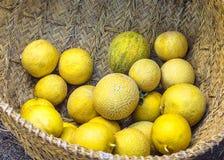 melony Fotografia Stock